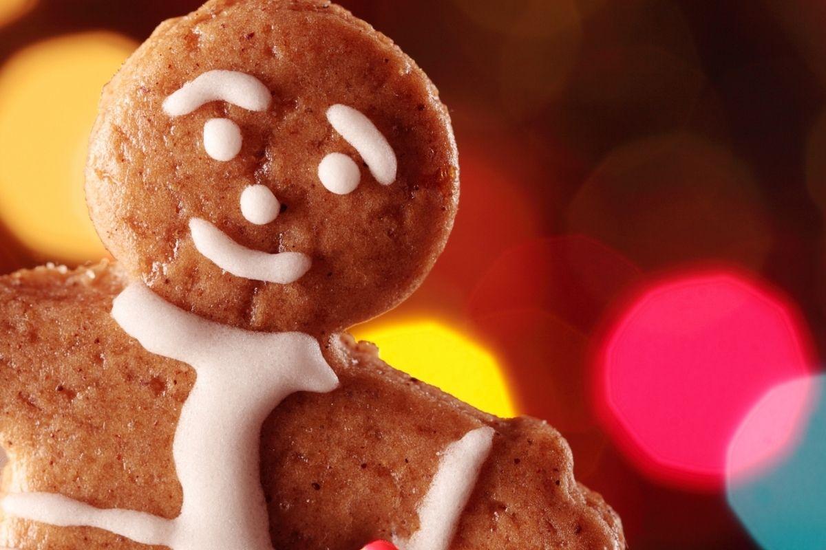 Gingerbread Kurabiyesi